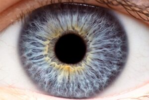 What You Should Know About Your Cornea - Hoffman Estates, IL